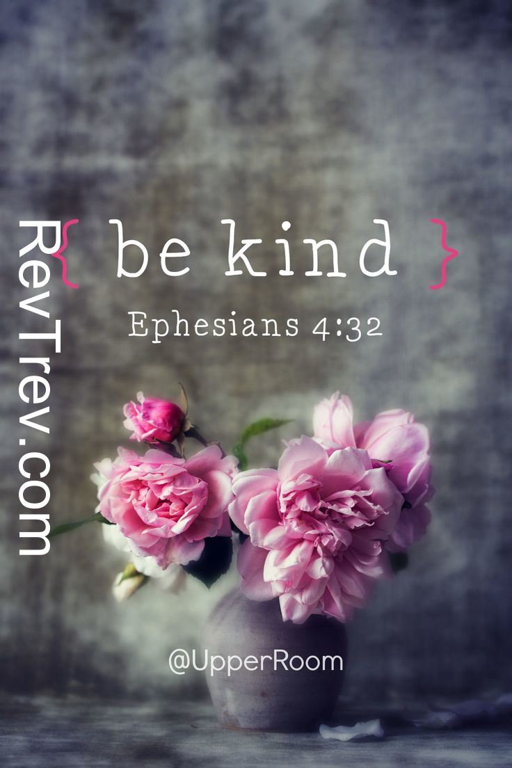 Be kind and compassionate to one another, forgiving each other, just as in Christ God forgav https://t.co/PWvVehJ73c https://t.co/jSbBGgBpW5