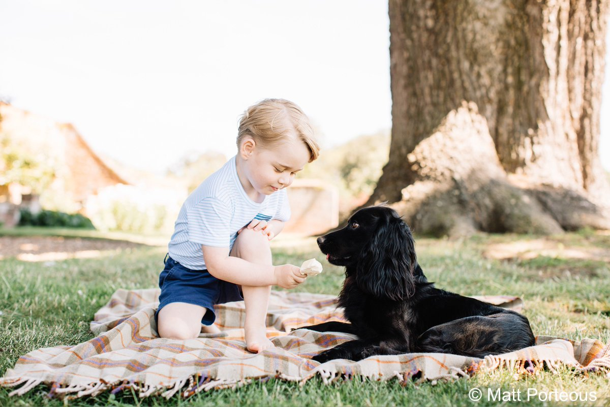 Retweet to wish Prince George a happy 3rd birthday! #HappyBirthdayPrinceGeorge