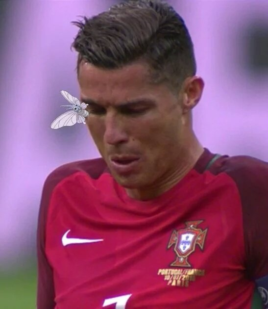 HAHAHAHAHA stop RT @L1keMike: Hope somebody caught that Venemoth on Ronaldo =/ #Euro2016Finale https://t.co/zNCoCu2BM3