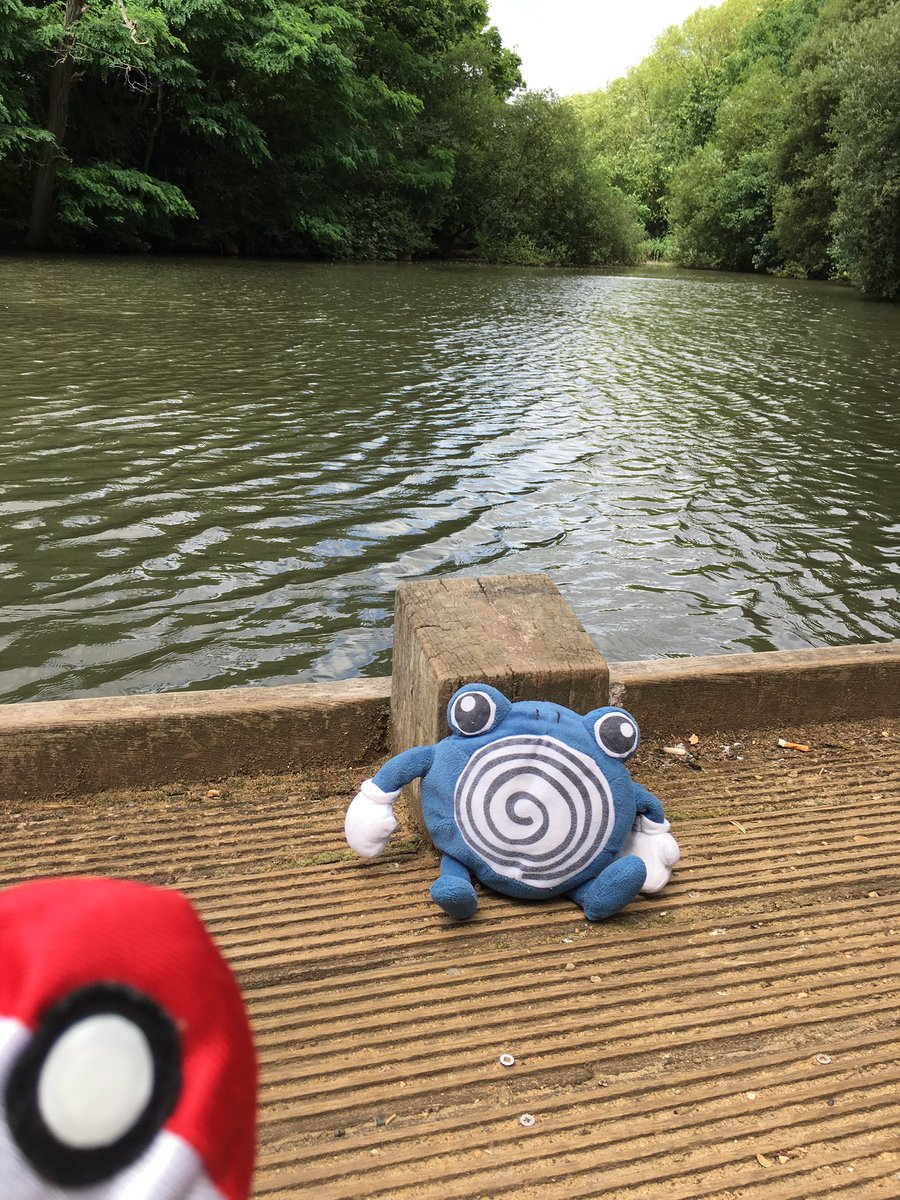 Who needs #PokemonGO https://t.co/bY2AgpPwx0