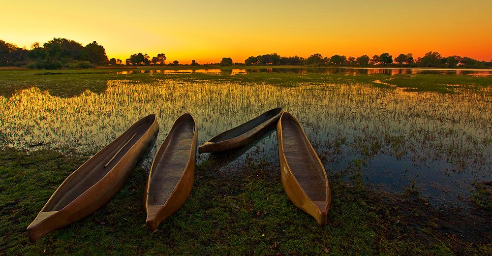Explore beautiful Botswana