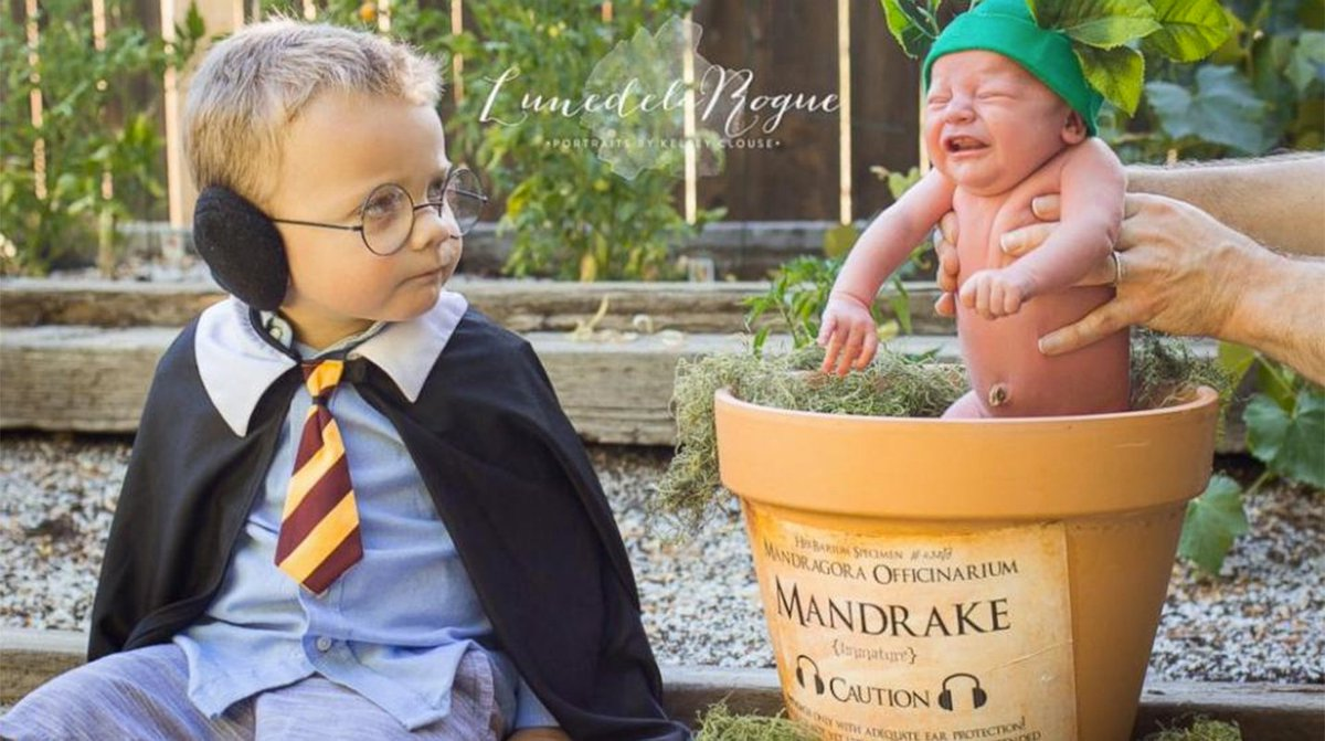 Oregon parents love Harry Potter so much they chose wizarding theme for son's newborn photos
