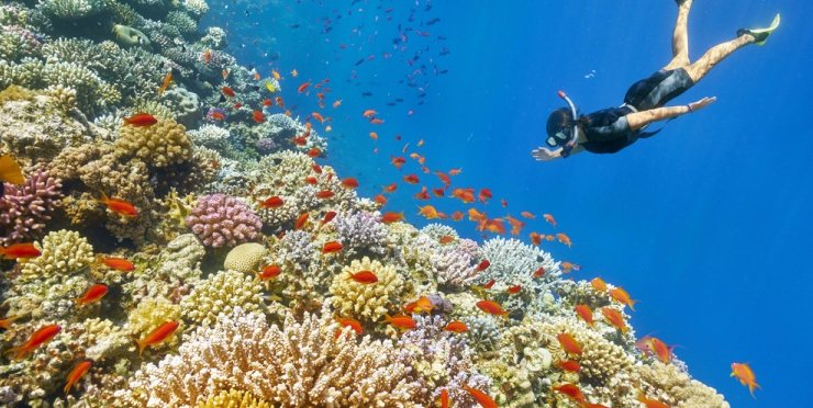 7 Unexpected Snorkeling Spots Around The World