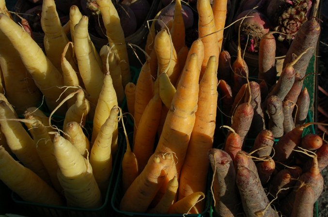 Holland Marsh grows enough carrots to provide each Canadian w/ 1.8kg a year. More on The Marsh Fri 7:40am @CBCKW891 https://t.co/TYRFA14ljt