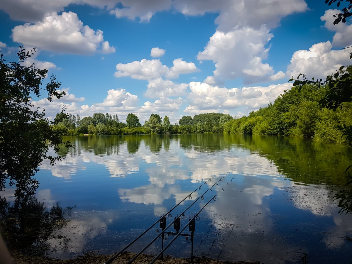 @Castaway_PVA social on Linear Hardwick, lovely place come Mr carp #carpfishing #carp #linearfisheri