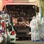 Driver 'cut through people' with truck in Nice attack