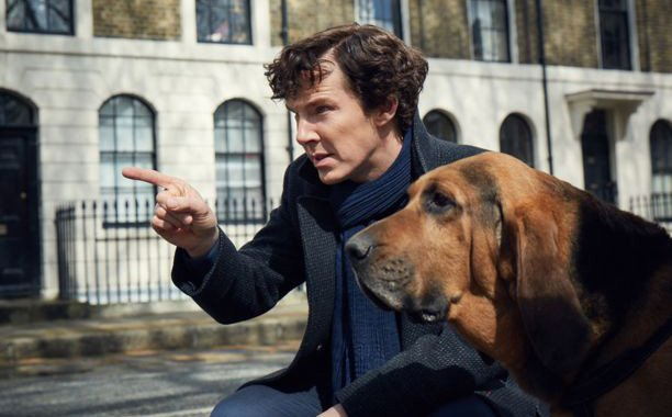 In this Sherlock season 4 photo, Benedict Cumberbatch has a dog and we have questions: 🐶