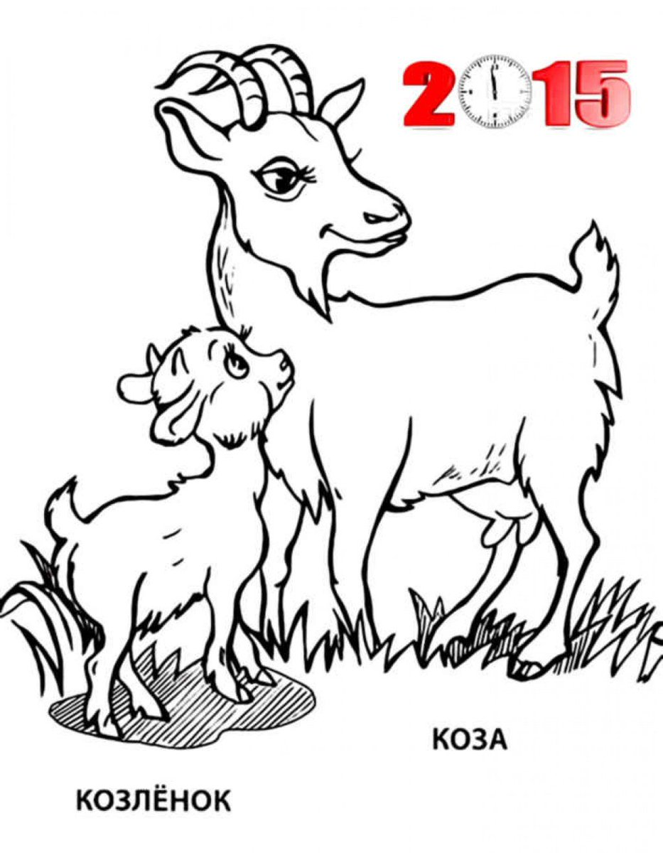 Sheep and goats coloring page - a-k-b.info