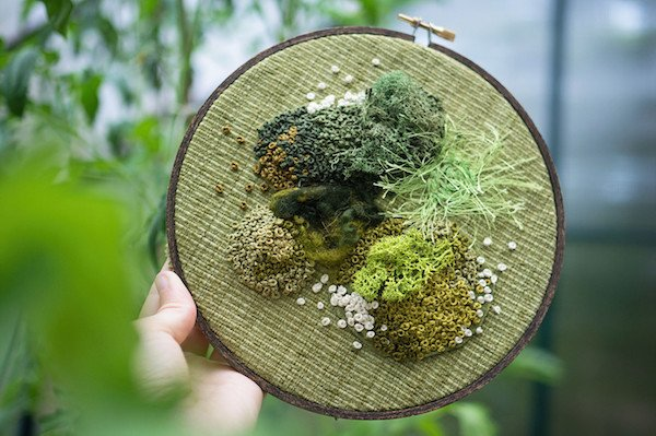 Intricate Moss Assemblages Sprout From Embroidery Hoops. https://t.co/Fe9Viy6mUJ https://t.co/IsxIPvf1jO