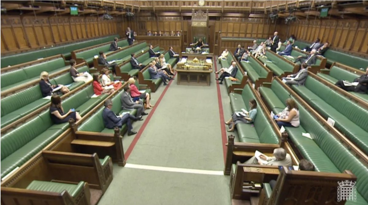 Don't normally go for green bench turnout hysteria… But it is looking rather thin for #HEBill debate today. https://t.co/iIdemw9q3P