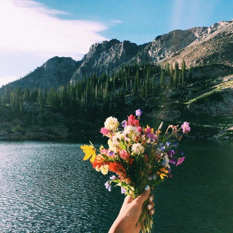 Doğanın güzelliği ile merhaba yeni bir gün 💗💙 #Günaydın https://t.co/5brbhA0F9q