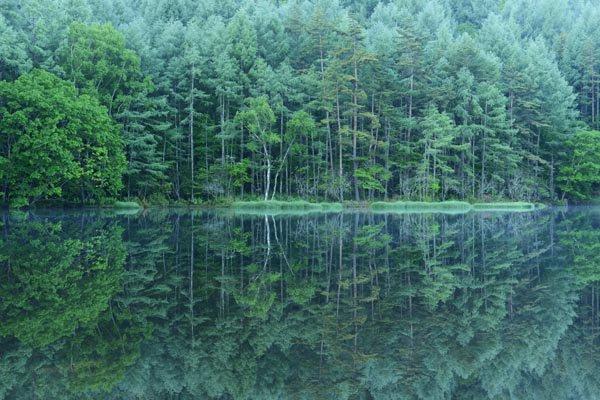 本日3日付の「絶景を行く」は、長野県茅野市の御射鹿池(みしゃかいけ)。日本画家・東山魁夷さんの作品「…