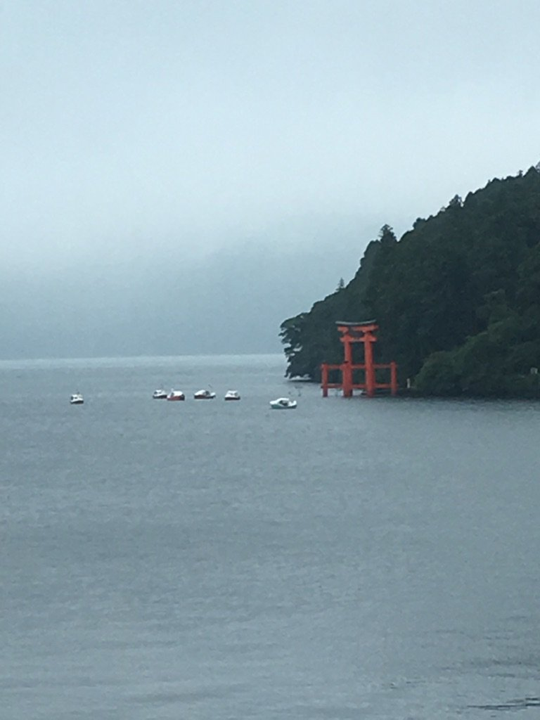 なぜか今日に限って芦ノ湖の箱根神社の鳥居に足漕ぎ白鳥ボートが集結してるじゃん?