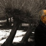 Abbas Kiarostami found inspiration where no one else was paying attention https://t.co/M9AorBwkJl https://t.co/sNbwPlqVsx