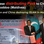 Chinese distributes pork products to children in ℅100 muslim #Maldives Thoddoo. https://t.co/BeNMdsrzYl