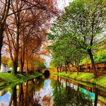 Picture perfect! Enjoy a morning stroll along #Dublins Grand Canal! 📷 IG/rockinfashion33 #lovedublin https://t.co/dviDU9e1wm