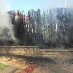 Incendio de un seto en residencial de la Avda. del Ejército Español. Bomba Urbana Ligera y 4 efectivos. 13:14 horas. https://t.co/DfI1pxLyPg