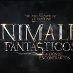 ¡En minutos exclusivas del mundo mágico y de #AnimalesFantásticos desde #SDCC2016! ¡RT si querés un nuevo trailer! https://t.co/SySHip2nIk