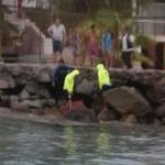Hallan cuerpo sin vida flotando en Playa Cavancha https://t.co/FrwCbGB3X8 https://t.co/b0qolHrMd5