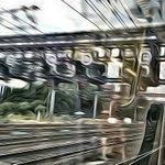 Lvg #Leeds #Yorkshire ona #Leeds #Sheffield #train https://t.co/0tdZPFWDC4 @luvthenorth444 @luvyorkshire444 https://t.co/m1seSCRyRt