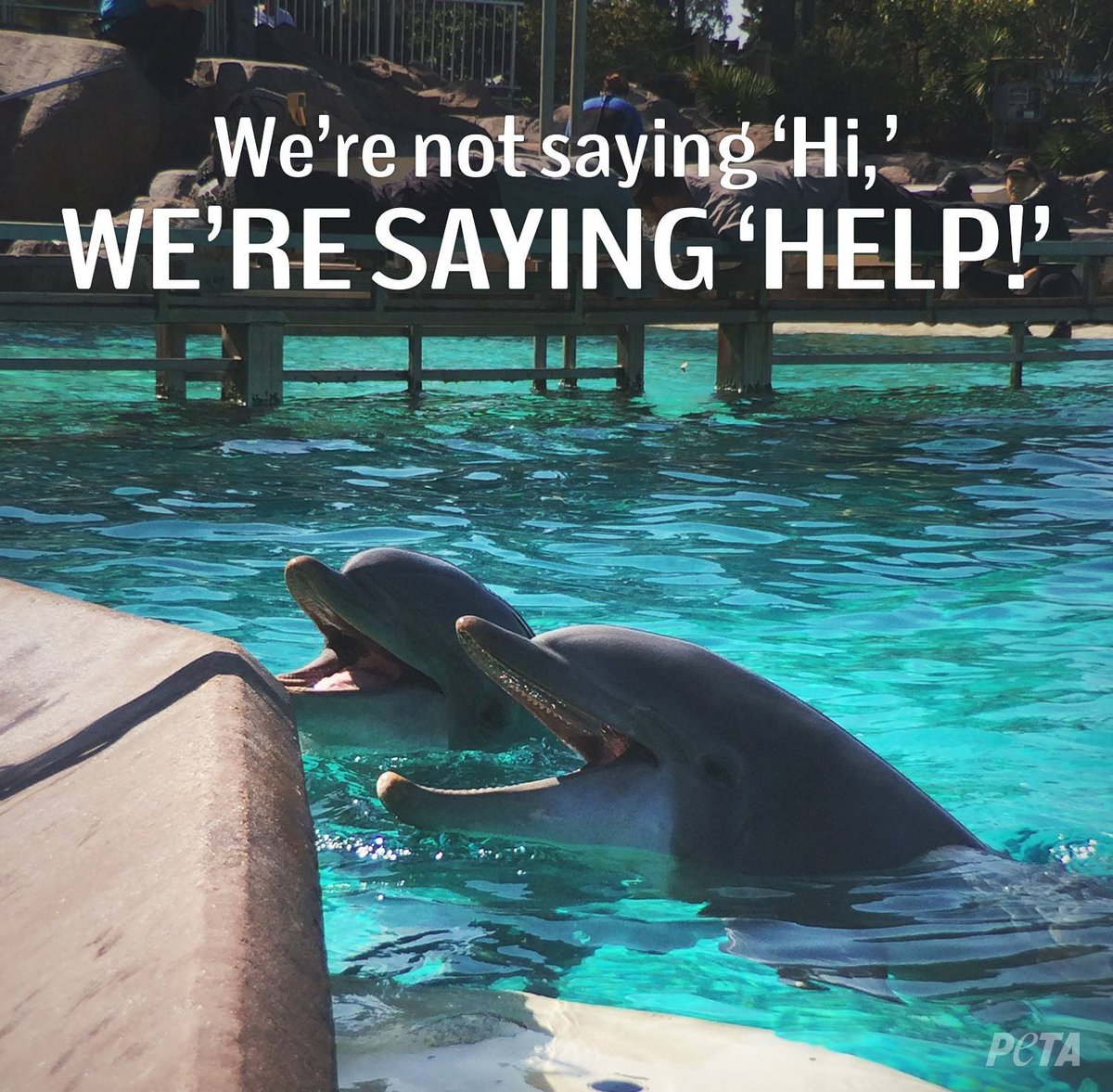 #EmptyTheTanks https://t.co/P933cjFpdj