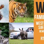 #WIN 1 FAMILY TICKET to @WestMidSafari #WMPS. Simply RT before 1/8 to enter! https://t.co/873hu2TNvc