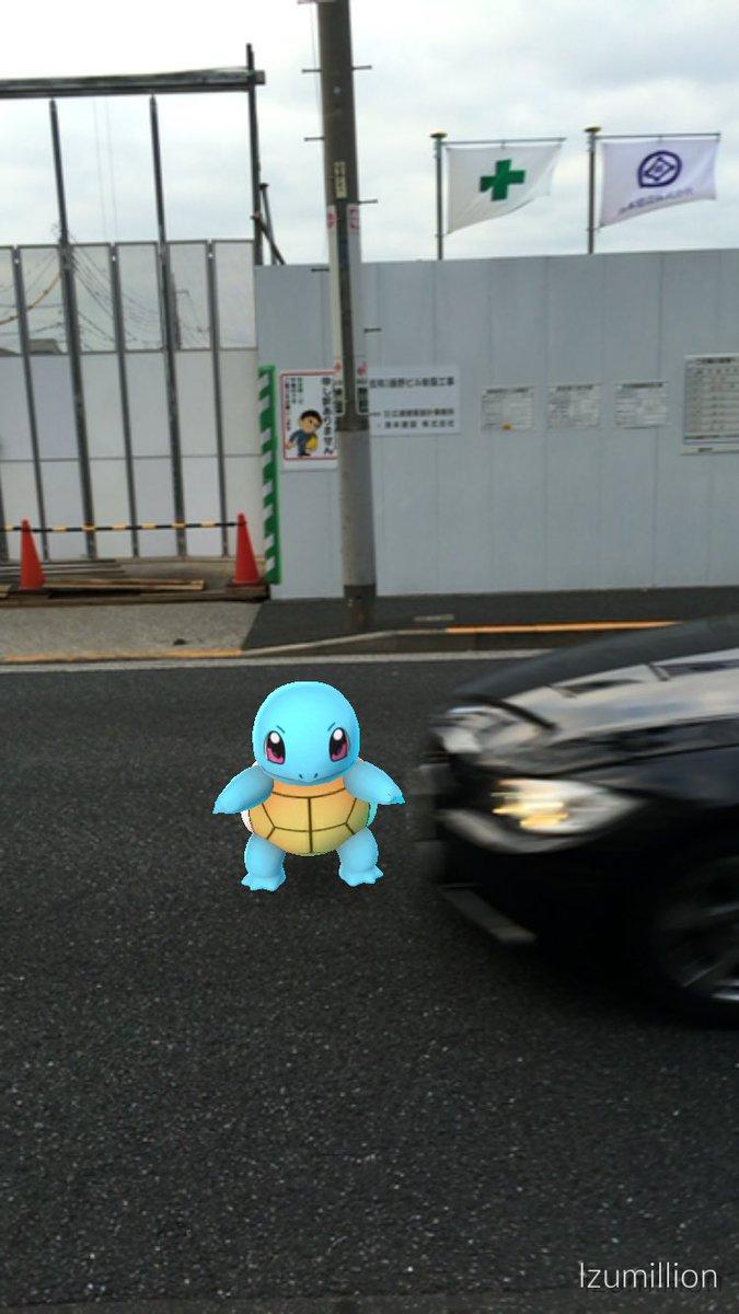 ゼニガメが黒塗りの高級車に追突する瞬間。