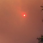 The Sun is on fire in Los Angeles! This is what our Sun looks like right now from our ongoing wildfire. https://t.co/VeXSwqPi3T