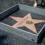 Stop.... Someone built a wall around Donald Trumps star on the Hollywood Walk of Fame. https://t.co/kMzjS4hT50
