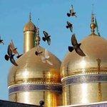 مرة اخرى يريد الإرهابيين أن يعدموا الحياة بتفجيرهم في الكاظمية لكن قباب الإمامين الكاظمين ع تأبى ذلك الرحمة للشهداء https://t.co/CBruBl4DMg