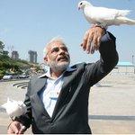 PM sending his message to Dalits & Kashmiris via Pigeons after Twitter being down for maintenance, New Delhi.(2016) https://t.co/CdPHYgslSN
