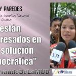 uhcarola: RT SibciGuarico: #LoDijo | YosneisyParedes Dip a la Asamblea Nacional por el edo #Guárico #NoAlFraudeDeL… https://t.co/IEn0FWoPAV