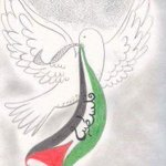 #قروب_بنات_جزائسطين #فلسطين_قاعده_على_قلوب_أعداء #فلسطين_خط_أحمر #تحيا_فلسطين_حره ✌✌✌1 https://t.co/6puVAOFfCq