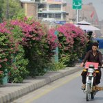 "#KPonRise Green Peshawar: ""City of flowers"" restoring to its original condition under PTI led KP govt https://t.co/6KbzvZmJ2A"