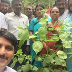 Started the #SelfieWithATree initiative from Ahmedabad today by planting the holy Bili Patra plant. https://t.co/3zEtZY4R3k
