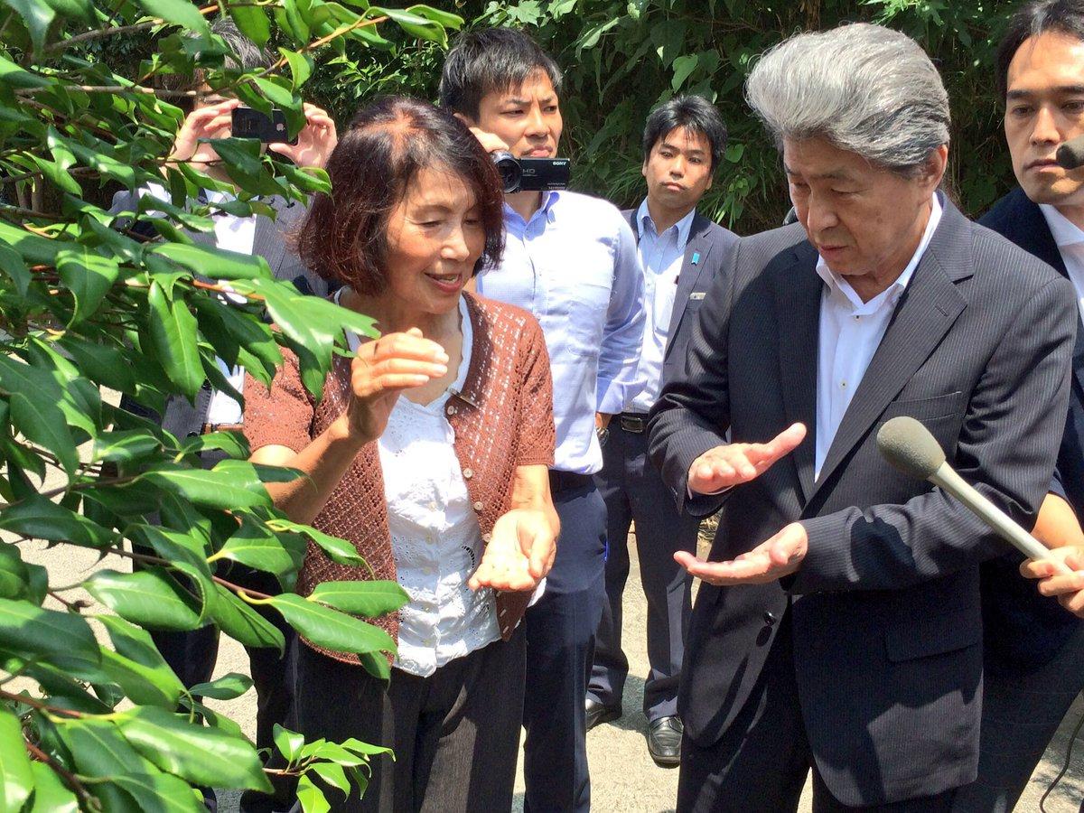 大島の椿染め工房「夢工房」を視察しました。 大島には多数の椿が自生しており、名産の「椿油」は天ぷら油…