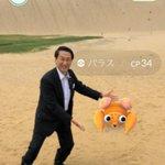 ポケモンGOの人気を観光客誘致につなげようと、平井伸治知事は鳥取砂丘を「スナホ・ゲーム解放区」とすることを宣言。「鳥取砂丘は広大で安全にゲームを楽しめる。夏休みの旅の目的地としてもらいたい」と述べた。※逆転の発想。さすが名知事 pic.twitter.com/dIhj3VecmT