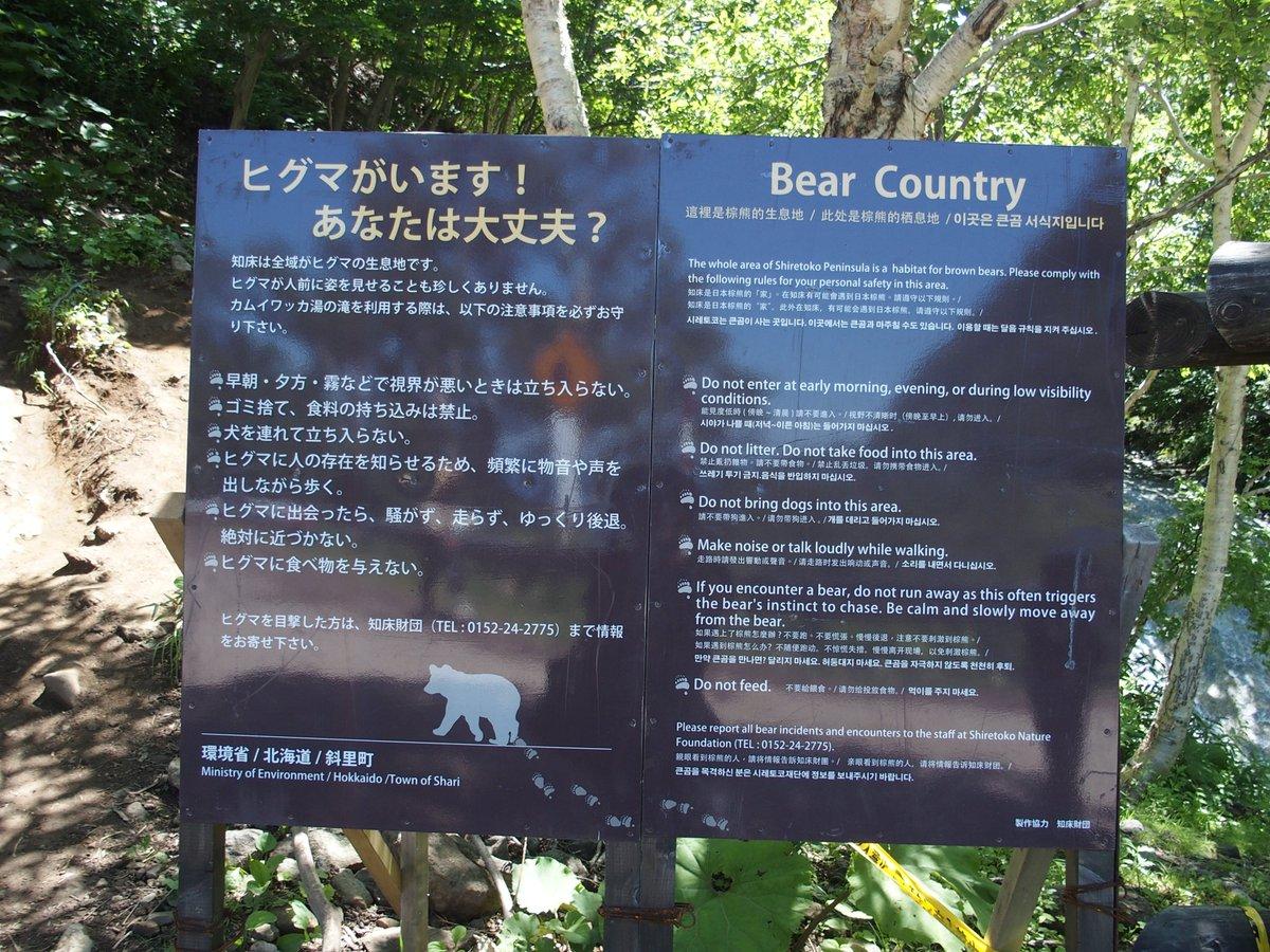 #動物 との共生。#知床 の奥地 #カムイワッカの滝 温泉が流れ、滑りにくいので登れる珍しい滝。熊に…