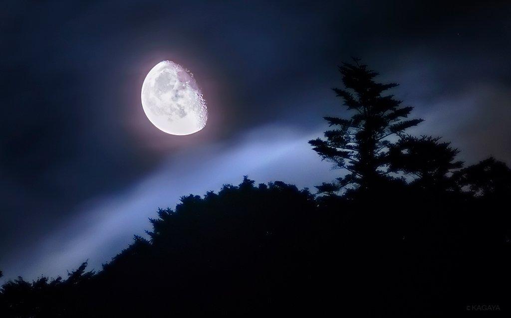昨日深夜、静かに昇る月が雲間から見えました。(房総半島にて撮影) 今日もお疲れ様でした。明日も穏やか…