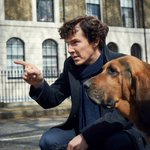 January 2017 cannot get here any faster. @Sherlock221Bs season 4 teaser is here! https://t.co/9NuFQCArHz https://t.co/aF9EPbwJYA