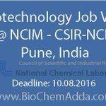 #JRF Biotechnology / #Microbiology #Job #Vacancy @ NCIM - CSIR-NCL, Pune, #India https://t.co/7c1tc4lmwc https://t.co/jzDwlr22JA