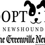Play w/ puppies, get lunch, & meet our newest @GreenvilleNews Newshound (and me!) this Wed from 12-2 @ our building https://t.co/JKQaVzglyT