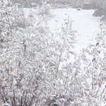 TOP READ: South Africa braces for icy, rainy weather >> https://t.co/zUcNxnGDd4 https://t.co/KsVfjtp4GK