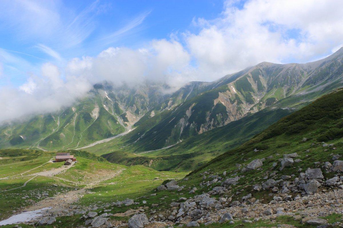 立山で出会った美しい夏山の風景です。雷鳥沢でのテント泊にて https://t.co/kaMGZEqiQX