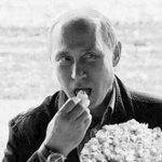 If Putin Is Behind the DNC Leak, He Deserves a Pulitzer https://t.co/zLaPM2TDIb https://t.co/DReJNvpnG1