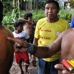 Lideranças Ka'apor do Maranhão denunciam que estão sob violento ataque de madeireiros https://t.co/YzFIYpYpyZ https://t.co/jEQwSEBilT