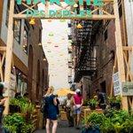 Un projet pilote pour réaménager les ruelles du centre-ville https://t.co/lOnKRH4dOC #polmtl https://t.co/jnMmuKAJZ3