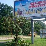 """Drzewo zasłaniało reklamę,drzewo zostało skasowane. Tak się """"dba"""" o zieleń we #Wroclaw... @GoTracz @WroclawRozmawia https://t.co/SqRzIAu2u6"""