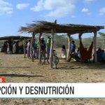 El oscuro panorama de los niños con hambre en La Guajira: 41 menores han muerto este año por desnutrición. https://t.co/xEWmccl5Zx