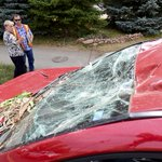 Photos of large tree that smashed up a car that fell on it in #longmont by @photojmatthew https://t.co/nbSIK0VU69